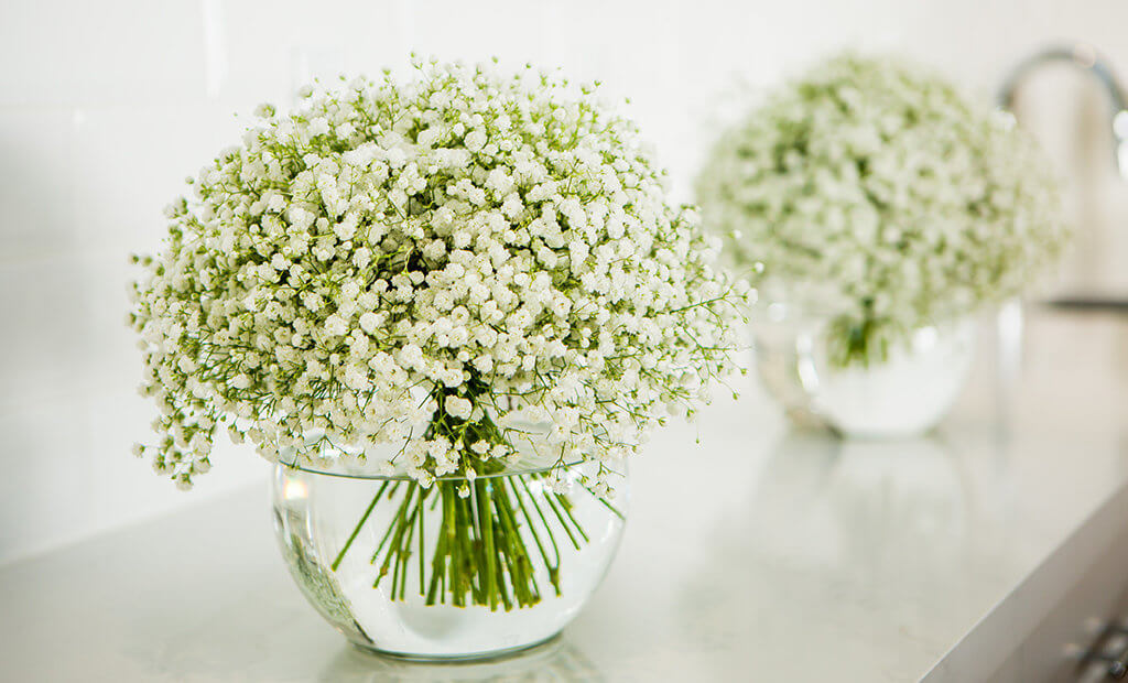 babys-breath-vases-decor
