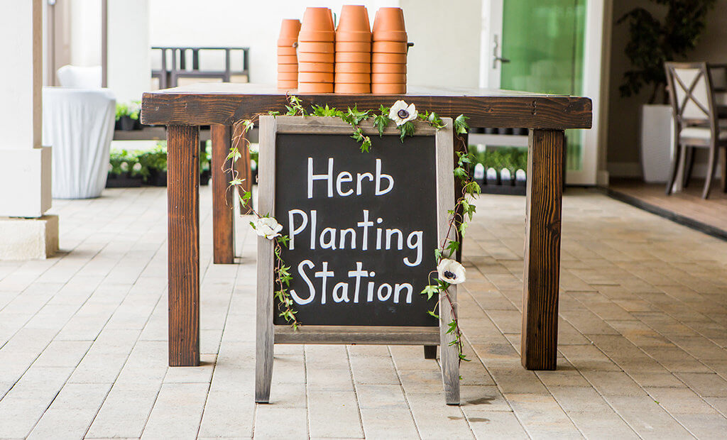 community-garden-herb-planting-station