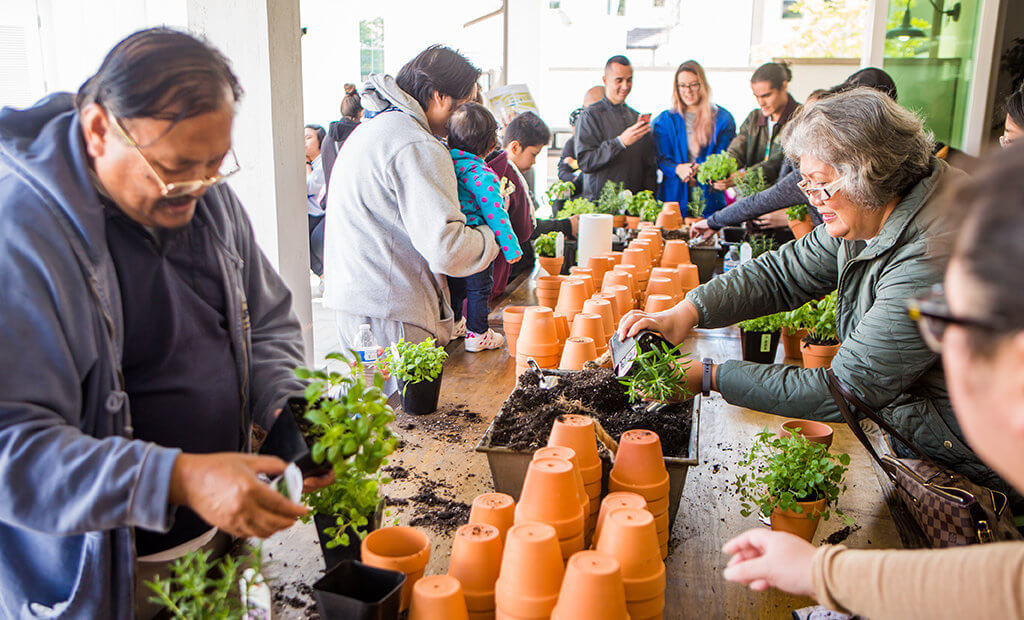 potting-plants-herbs-community-event