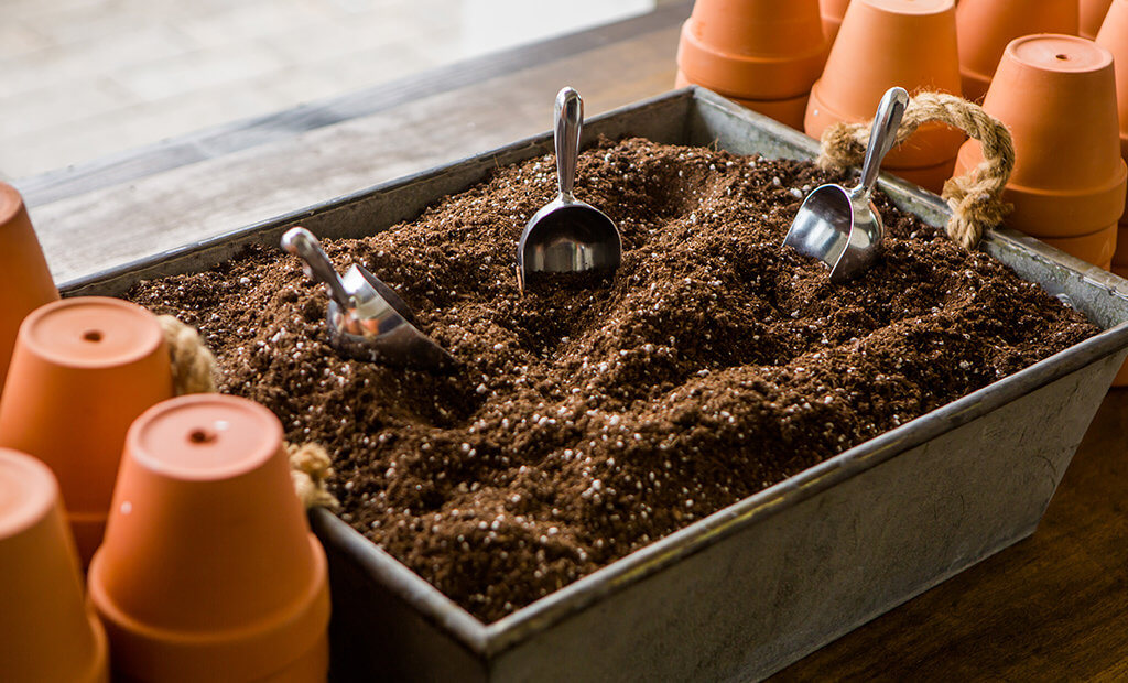 soil-planters-seeds